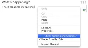 Check Spelling and Grammar in Firefox